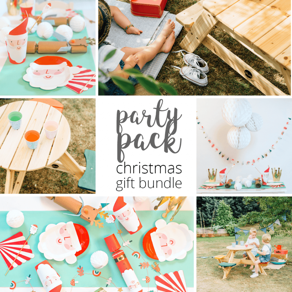 Plum Christmas Picnic Party Pack