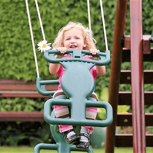 PLUM SILVERBACK SWING SET